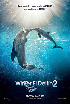 Winter El Delf�n 2